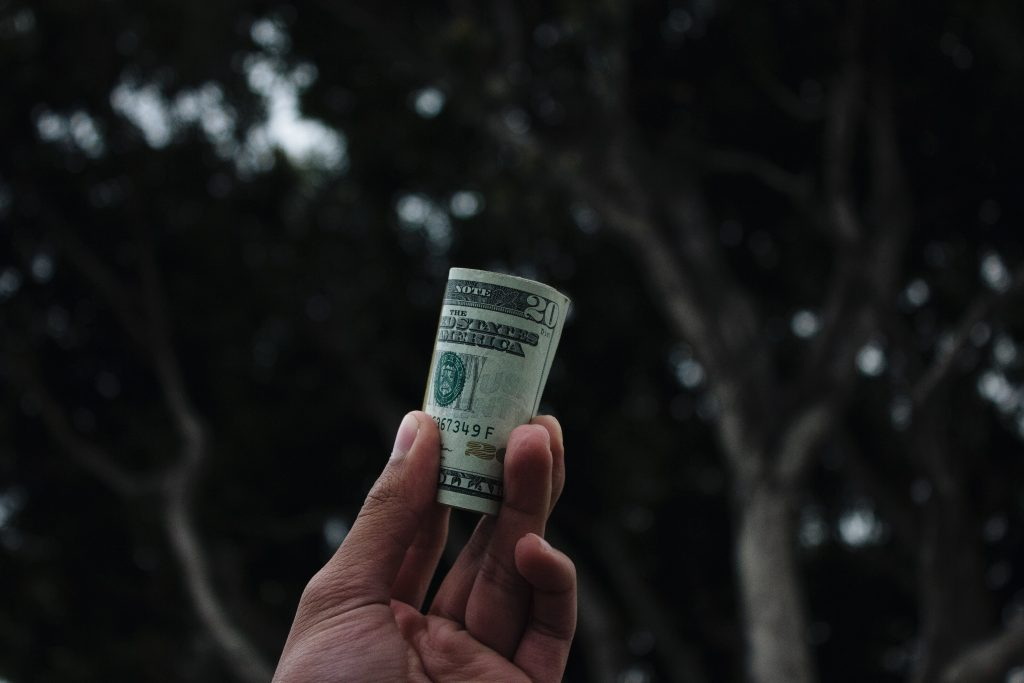 Image of a hand holding up a rolled dollar bill - How to measure SEO effectiveness - Copify blog